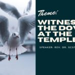 Holy Monday : Witness of the Doves at the Temple